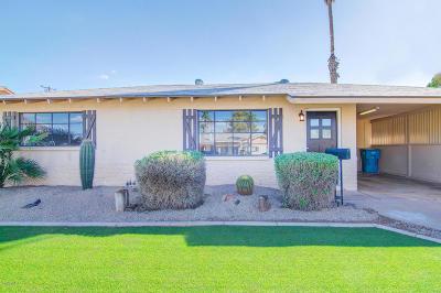 Phoenix Single Family Home For Sale: 1123 E Las Palmaritas Drive