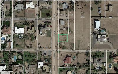 Queen Creek Residential Lots & Land For Sale: 26511 S Recker Road