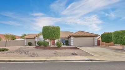 Mesa,  San Tan Valley,  Queen Creek, Gold Canyon Single Family Home For Sale: 3243 N Saffron