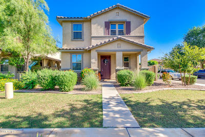 Gilbert Single Family Home For Sale: 2806 S Anderson Lane