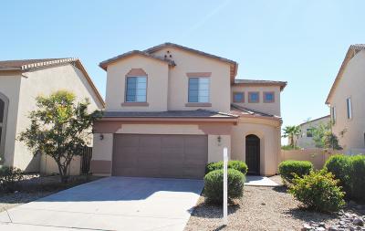 Queen Creek, San Tan Valley Single Family Home For Sale: 707 W Vineyard Plains Drive