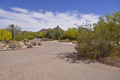 Scottsdale Residential Lots & Land For Sale: 9804 E Running Deer Trail