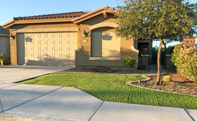 Queen Creek, San Tan Valley Single Family Home For Sale: 1374 W Alder Road