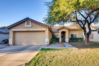 Mesa Single Family Home For Sale: 11042 E Diamond Avenue