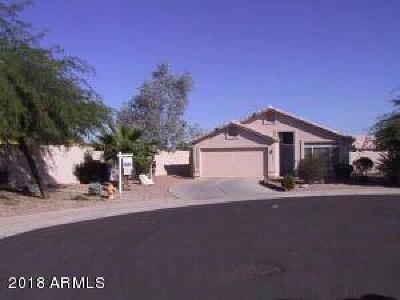 Gilbert Single Family Home For Sale: 1211 S Pueblo Court