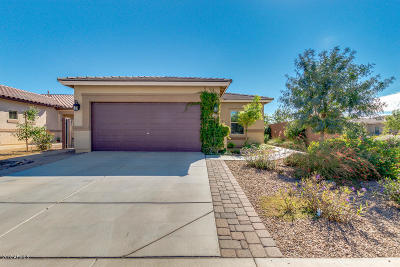 San Tan Valley Single Family Home For Sale: 1521 W Princess Tree Avenue