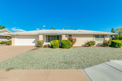 Sun City AZ Single Family Home For Sale: $229,000