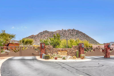 Troon Fairways, Troon Fairways Lot 1-107 Tr A-D Single Family Home For Sale: 10452 E Quartz Rock Road