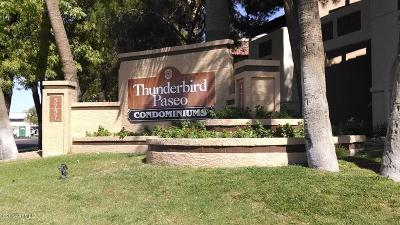 Glendale Rental For Rent: 5757 W Eugie Avenue #1106