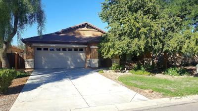 San Tan Valley Single Family Home For Sale: 1408 E Angeline Avenue