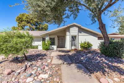 Mesa Single Family Home For Sale: 1458 W Pampa Avenue