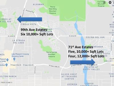 Peoria Residential Lots & Land For Sale: N 99th Avenue