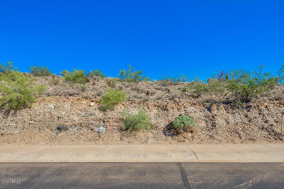 Phoenix Residential Lots & Land For Sale: 13053 N 17th Place