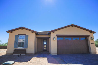Rio Verde Single Family Home For Sale: 17993 E Silver Sage Lane