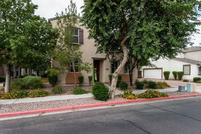 Mesa Rental For Rent: 1634 S Chatsworth