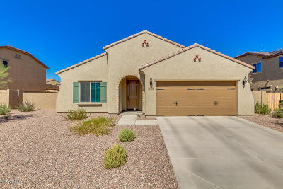 Surprise Single Family Home For Sale: 17456 W Hedgehog Place
