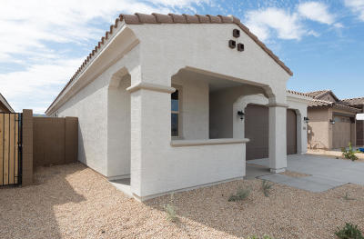Phoenix Single Family Home For Sale: 2822 E Hidalgo Avenue