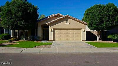 Chandler Single Family Home For Sale: 3600 S Hollyhock Place