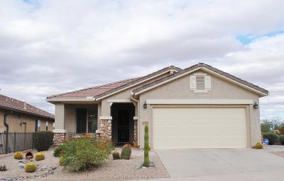 San Tan Valley Single Family Home For Sale: 470 W Twin Peaks Parkway