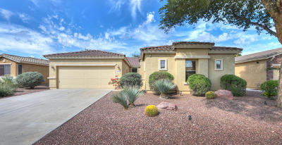 Maricopa Single Family Home For Sale: 42926 W Morning Dove Lane