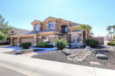 Scottsdale Single Family Home For Sale: 5533 E Helena Drive
