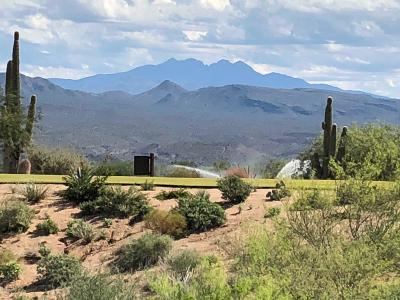 Rio Verde Residential Lots & Land For Sale: 29313 N Round Butte Road