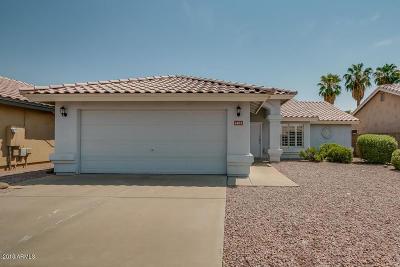 Phoenix Single Family Home For Sale: 1403 W Michelle Drive