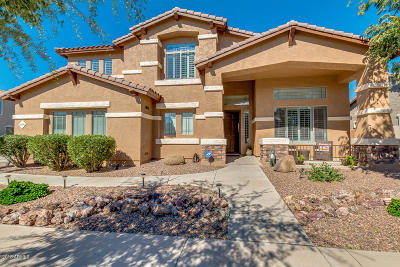 Queen Creek Single Family Home For Sale: 18698 E Peartree Lane