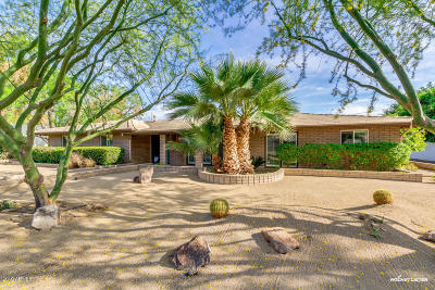 Phoenix Single Family Home For Sale: 531 W Why Worry Lane