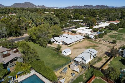 Phoenix Single Family Home For Sale: 1607 W Frier Drive