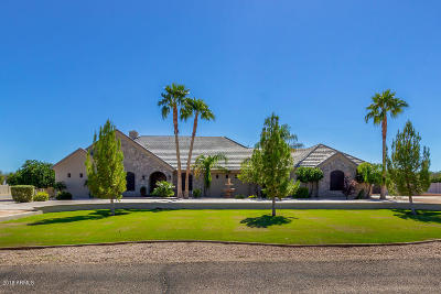 Queen Creek Single Family Home For Sale: 20431 E Excelsior Court