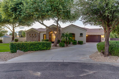 Gilbert Single Family Home For Sale: 15404 E Pickett Court