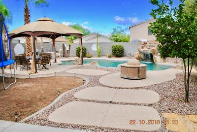 San Tan Valley Single Family Home For Sale: 1094 E Silktassel Trail