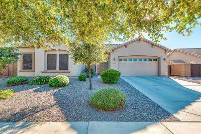 Gilbert AZ Single Family Home For Sale: $365,000