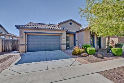 Surprise Single Family Home For Sale: 25624 N Desert Mesa Drive N