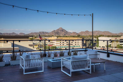 Phoenix Rental For Rent: 4626 N 16th Street #1223