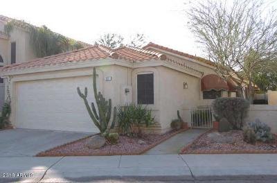 Phoenix Rental For Rent: 317 W Le Marche Avenue
