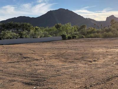 Paradise Valley Residential Lots & Land For Sale: 6264 E Joshua Tree Lane