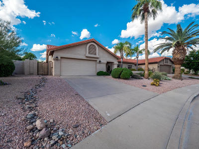 Scottsdale Single Family Home For Sale: 10576 E Caron Street
