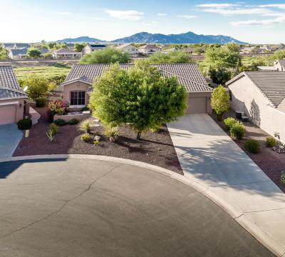 Maricopa Single Family Home For Sale: 42922 W Castle Cove Circle