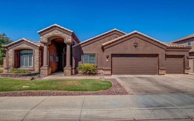 Laveen Single Family Home For Sale: 4324 W Pearce Road