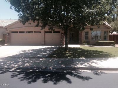 Chandler Single Family Home For Sale: 1391 W Bartlett Way