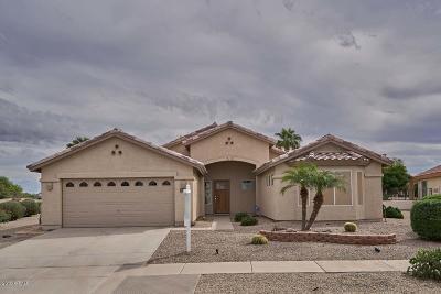 Casa Grande Single Family Home For Sale: 301 N Santiago Trail