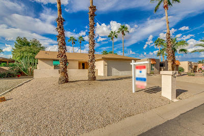 Chandler, Gilbert, Mesa, Queen Creek, San Tan Valley, Sun Lakes, Gold Canyon, Maricopa Single Family Home For Sale: 9307 E Sun Lakes Boulevard N