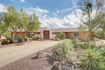 Cave Creek Single Family Home For Sale: 5229 E Lone Mountain Road