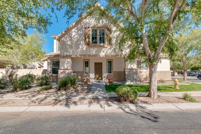 Single Family Home For Sale: 1498 S Avocet Street
