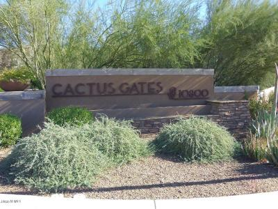 Scottsdale Residential Lots & Land For Sale: 10800 E Cactus Road