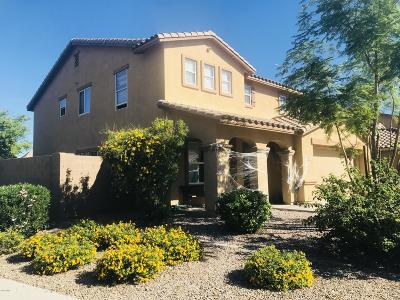 San Tan Valley Single Family Home UCB (Under Contract-Backups): 1336 E Desert Holly Drive