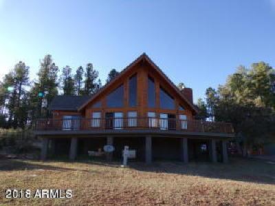 Payson Single Family Home For Sale: 746 W Sleepy Hollow Lane W