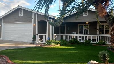 Scottsdale Single Family Home For Sale: 6809 E Sandra Terrace